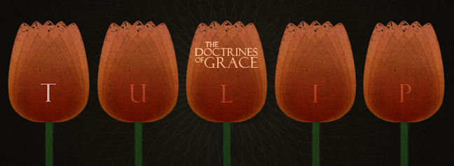 Doctrines-Of-Grace-T